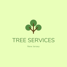 Tree Services Affordable Cost